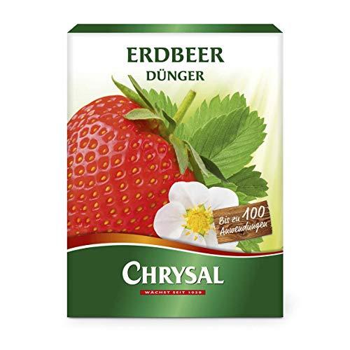 Chrysal Dünger Set für Tomaten & Erdbeeren...