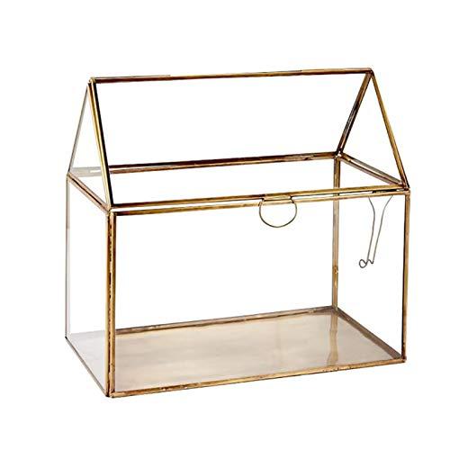 Terrarium Glas,Geometrisches Terrarium...