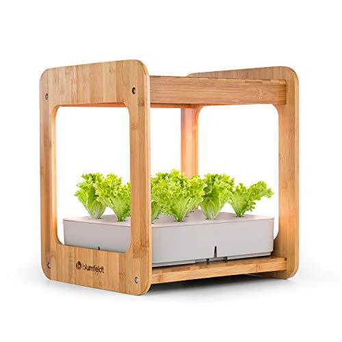 blumfeldt Urban Bamboo - Indoor Garden,...