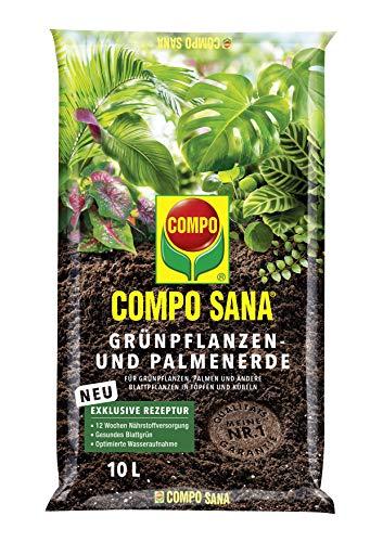 COMPO SANA Grünpflanzen- und Palmenerde mit...
