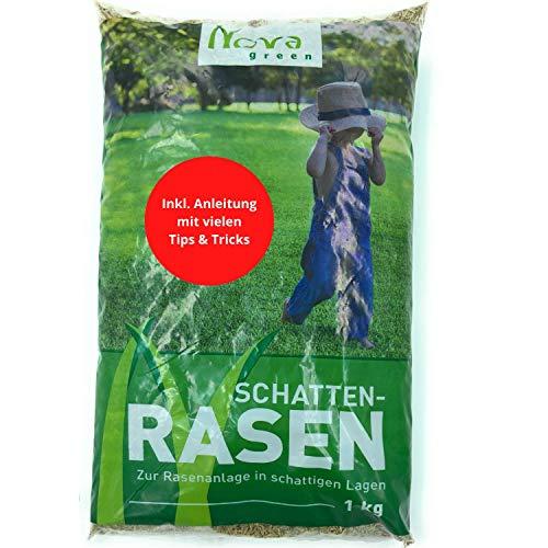 Premium Schattenrasen Rasensamen...