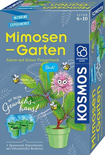 KOSMOS 657802 Mimosen-Garten, Pflanzen...