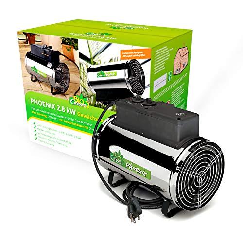 Bio Green Elektrogebläseheizung Phoenix,...