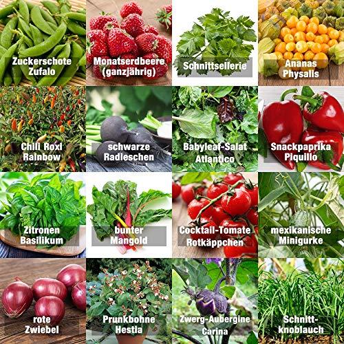Samen Gemüse Set'indoor-Mix' - perfektes...