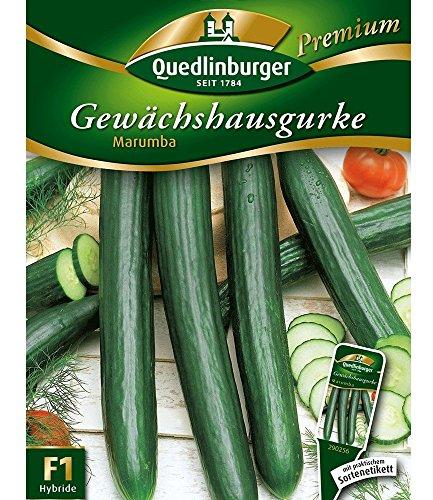 Quedlinburger Gewächshaus-Gurke 'Marumba', 1...
