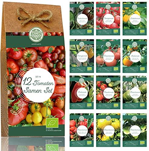 Bio Tomaten Samen Set – 12 Sorten...